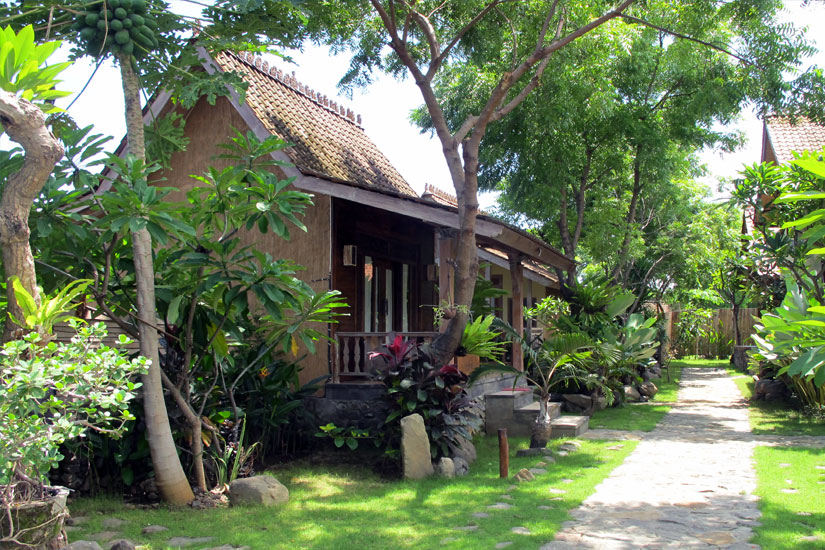 Bali dive and stay at our accommodation